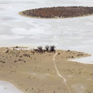 Kwando Nxai Pan Camp - where to stay for pilots in Botswana , Bild 26/26